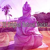31 Original Natural Tracks by Classical Study Music (1)