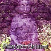 45 Welcome Sounds For A Calm Environment von Massage Therapy Music