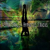 43 Naturally Hypnotic Tracks de Zen Meditation and Natural White Noise and New Age Deep Massage