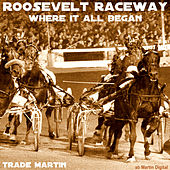 Roosevelt Raceway (Where It All Began) by Trade Martin