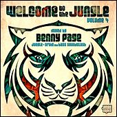 Welcome To The Jungle, Vol. 4: The Ultimate Jungle Cakes Drum & Bass Compilation - EP by Various Artists