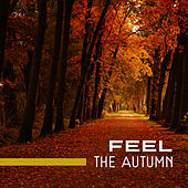 Feel The Autumn by Top 40