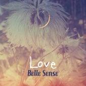 Love by Belle Sense