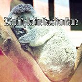32 Soothing Bedtime Tracks From Nature by Bedtime Baby
