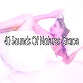 40 Sounds Of Natures Grace by Nature Sound Series