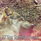 37 Spa Soothing Auras by S.P.A