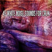 45 White Noise Sounds For Calm by Ocean Waves For Sleep (1)