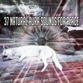 37 Natural Aura Sounds For Peace de Best Relaxing SPA Music