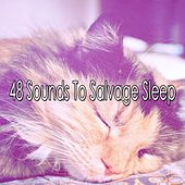 48 Sounds To Salvage Sleep de White Noise Babies