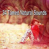34 Tamed Natural Sounds by Baby Sleep Sleep