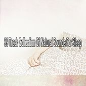 39 Track Collection Of Natural Sounds For Sleep by Ocean Waves For Sleep (1)