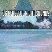 36 Peaceful Night Sounds by Deep Sleep Relaxation