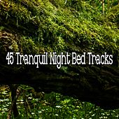 45 Tranquil Night Bed Tracks by Ocean Waves For Sleep (1)