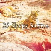 25 Sleepy Storms de Thunderstorm Sleep