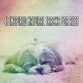 41 Inspired Natural Tracks For Rest by White Noise For Baby Sleep