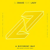 A Different Way (Bro Safari & ETC!ETC! Remix) van DJ Snake