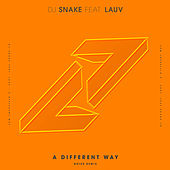 A Different Way (Noizu Remix) van DJ Snake