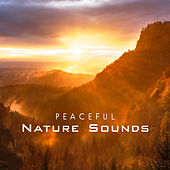 Peaceful Nature Sounds von Soothing Sounds