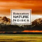 Relaxation Nature Noises de Sounds Of Nature