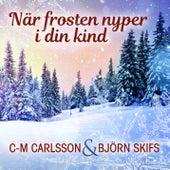 När frosten nyper i din kind by Björn Skifs
