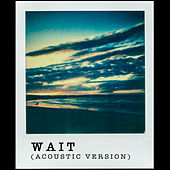 Wait (Acoustic Version) by Turin Brakes