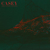 Where I Go When I Am Sleeping by Casey