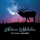 Nature Melodies to Fall Asleep by Nature Sounds (1)