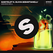 Wishing Well van Sam Feldt