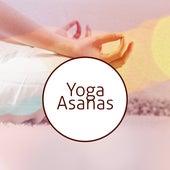 Yoga Asanas by Meditation Awareness
