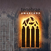 Tenebrae by Amarcord