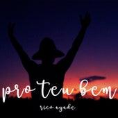 Pro Teu Bem by Rico Ayade
