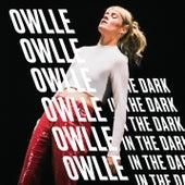 In The Dark by Owlle