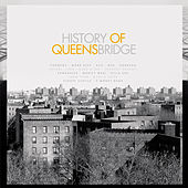 History of Queensbridge de Various Artists