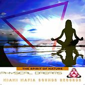The Spirit of Nature by Various Artists