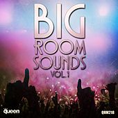 Big Room Sounds, Vol. 1 de Various Artists
