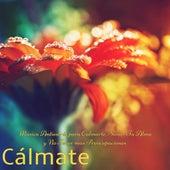 Cálmate - Música Antiestrés para Calmarte, Sanar Tu Alma y No Tener más Preocupaciones de Various Artists