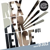 Rexperience #01 mixed by D'julz by Various Artists