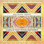 A Taste of South African Psychedelics - EP de Various Artists