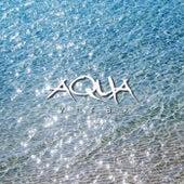 Aqua by Virax
