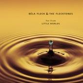 Ten From Little Worlds by Béla Fleck