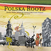 Polska Rootz by Various Artists