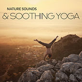 Nature Sounds & Soothing Yoga de Nature Sound Collection