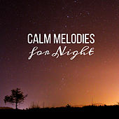 Calm Melodies for Night by Sleep Sound Library