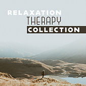 Relaxation Therapy Collection de Ambient Music Therapy