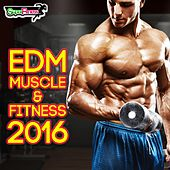 EDM Muscle & Fitness 2016 - EP by Various Artists