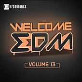 Welcome EDM, Vol. 13 by Various Artists