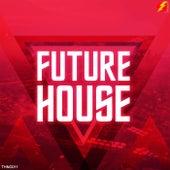 Future House - EP de Various Artists