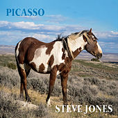 Picasso by Steve Jones