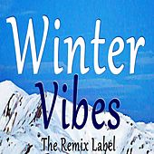 Winter Vibes (Vibrant Ambient Music In Key B on The Remix Label) de Cristian Paduraru