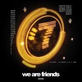 We Are Friends, Vol. 7 von Various Artists